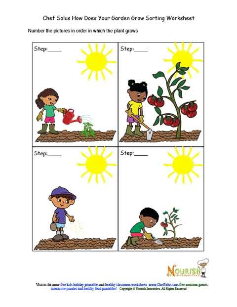 Kids Garden Chronological Sorting Activity Worksheet