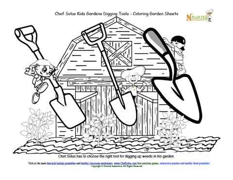 Chef Solus Kids Garden Story 4