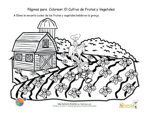 Página para Colorear - Cuidado de las Semillas Recién Sembradas