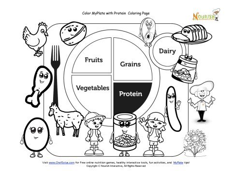 Printable MyPlate Protein Coloring Sheet