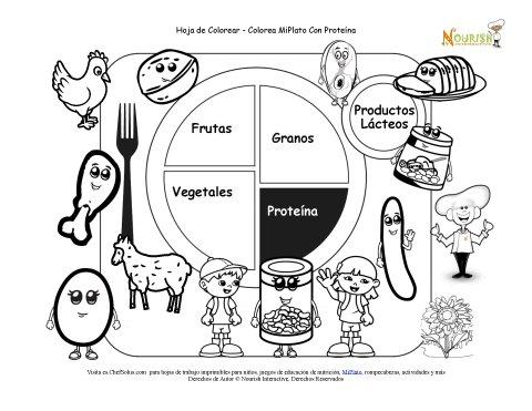 Hoja Imprimible para Colorear de las Proteínas de Mi Plato