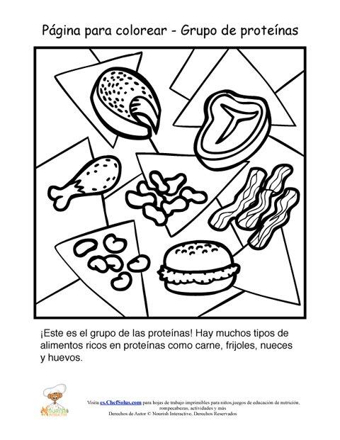 Hoja Para Colorear del Grupo Alimenticio de Las Proteínas