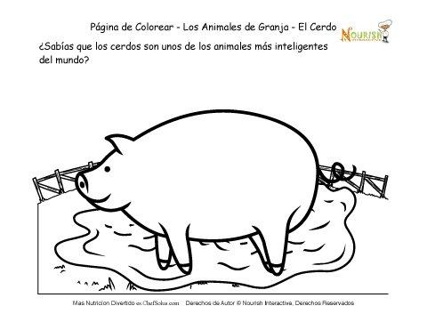 Página de Datos Divertidos Y Para Colorear de Animales de Granja ...
