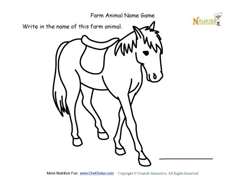 how to write animal name