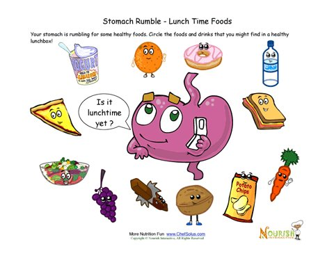 Stomach Rumble Choose Lunchtime Foods