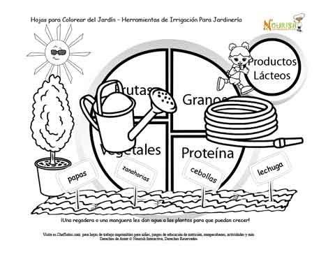 Historia del Jardín del Mi Plato Alimenticia Página 2 - Herramientas ...