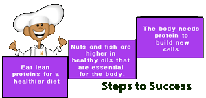 healthy seeds and nut proteins
