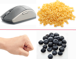 Estimating Serving Sizes Using Common Household Items