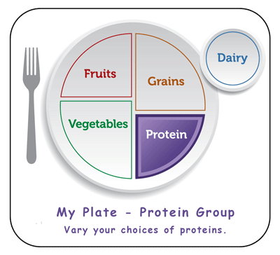 protein food group