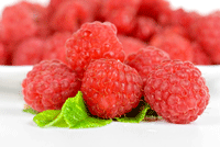 summer fruits from the food group